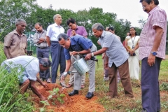 Environment Day Celebration