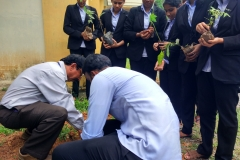 Environmental Day Celebration